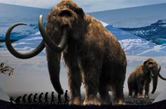 Gigantes da Idade do Gelo